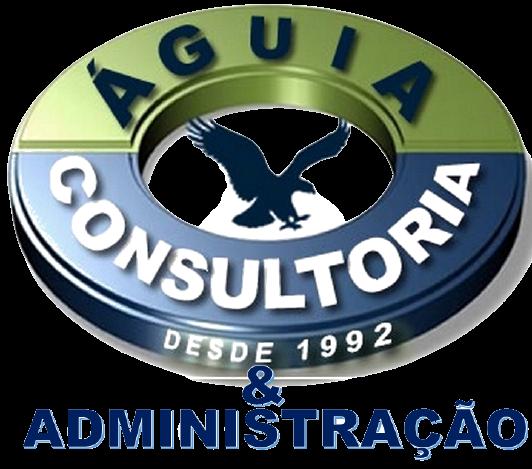 Rui Ventura – Águia Consultoria e Administração